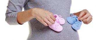 беременная держит пинетки