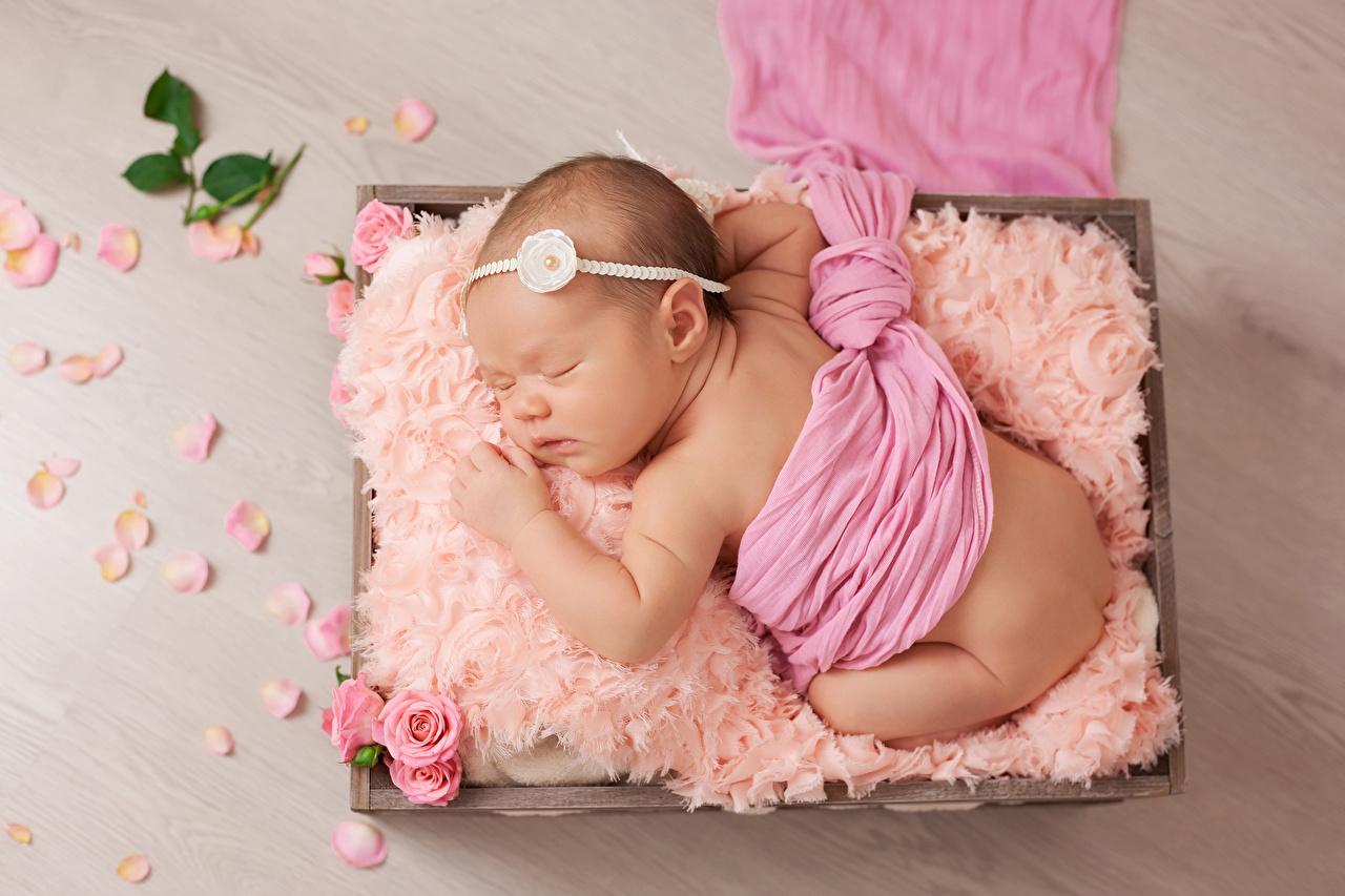 Все методы для успешного зачатия дочери