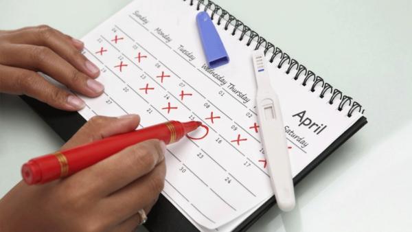 Женщина вносит данные в календарь овуляции