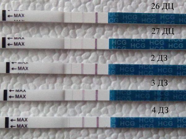 Динамика ярчания тестов на беременность