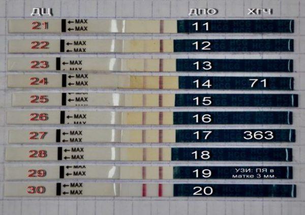 Динамика уровня ХГЧ в моче по результатам теста