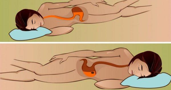 Положение желудка и его содержимого в позах на правом и левом боку