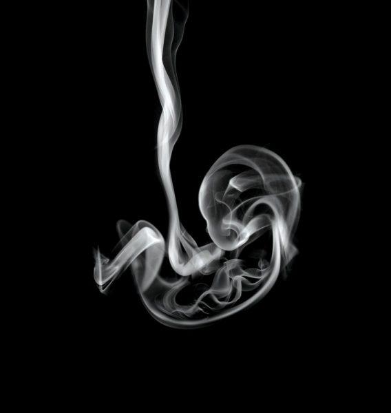 ребенок в утробе из дыма