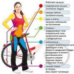 Женщина стоит возле велосипеда, указаны группы мышц, которые укрепляются