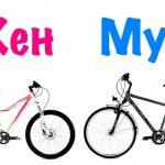 Женская и мужская модели велосипеда