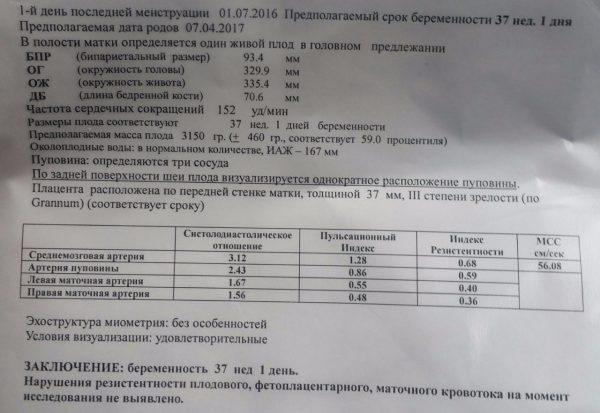 Пример отображения индексов в основных сосудах