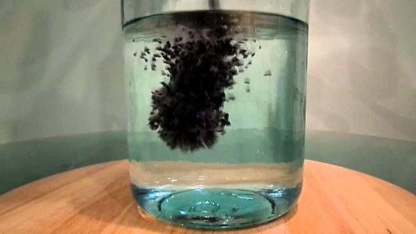 Измельчённый активированный уголь бросили в стакан с водой