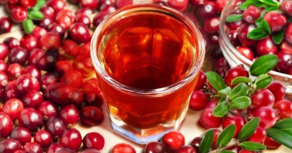 настой в стакане с ягодами и листьями клюквы вокруг