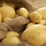 Картофель в мешке и рядом с ним
