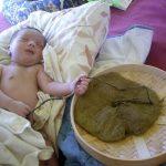 Плацента в плетёной корзине