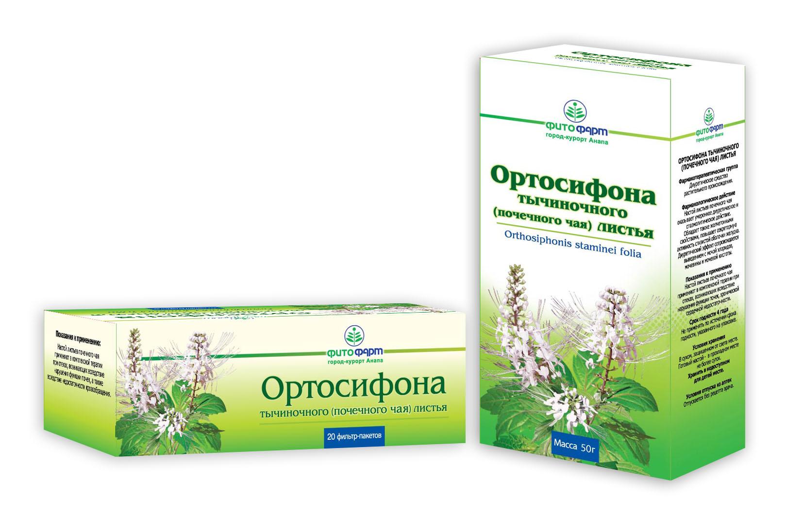 Ортосифон тычиночный (почечный чай): применение при беременности