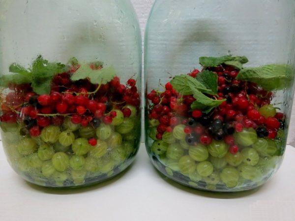 Ягоды крыжовника, смородины и листья мелиссы, приготовленные для консервации компота