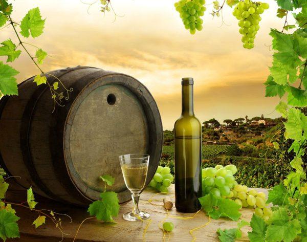 бутылка вина рядом с бочкой на фоне виноградной лозы