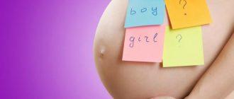 Стикеры на беременном животе