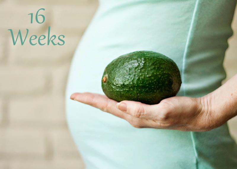 Особенности 17-й недели беременности