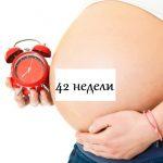 Беременная с большим животом держит будильник, на животе надпись «42 недели»